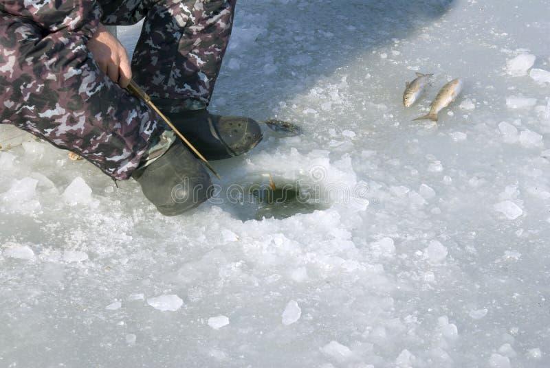 Pesca en el hielo fotografía de archivo