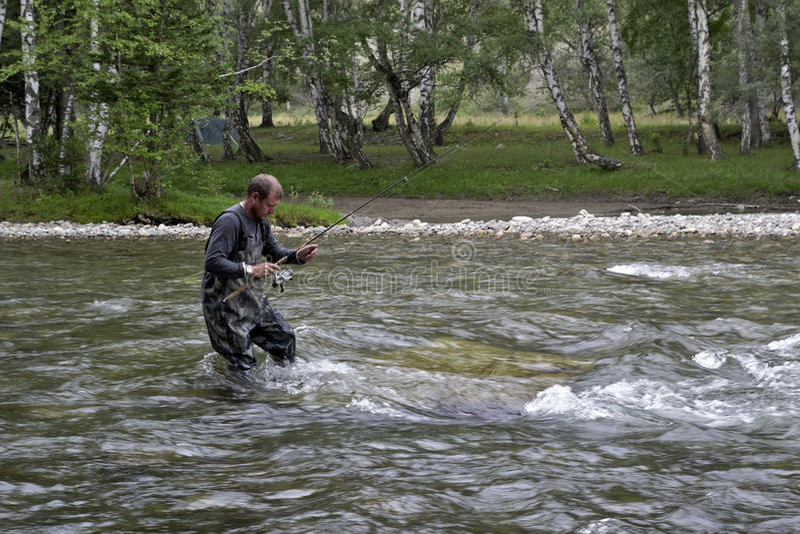 Pesca en la caña de pescar del río de la montaña Pesca del pescador en las montañas Pesca de la trucha imagen de archivo libre de regalías