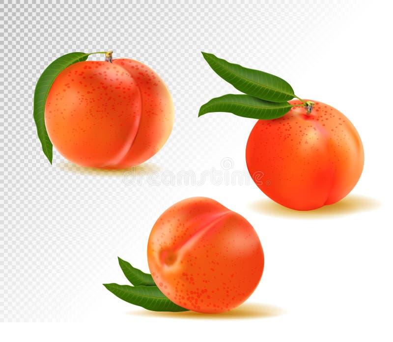 Pesca Frutta dolce icone di vettore 3d messe Illustrazione realistica royalty illustrazione gratis