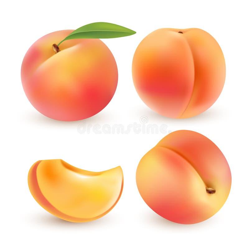 Pesca Frutta dolce icone di vettore 3d messe Illustrazione realistica illustrazione di stock