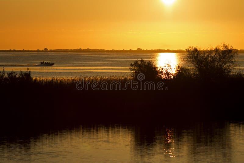 Pesca indo no nascer do sol fotos de stock royalty free
