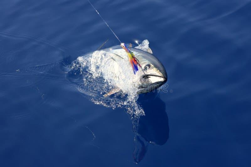 Pesca mediterránea y desbloquear del atún azul de la aleta imagen de archivo libre de regalías