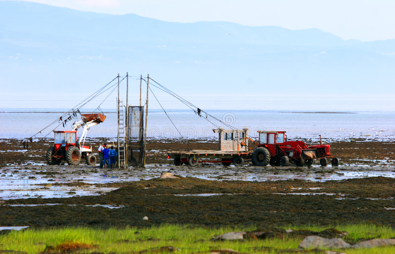 Pesca moderna dell'anguilla in Quebec immagine stock libera da diritti