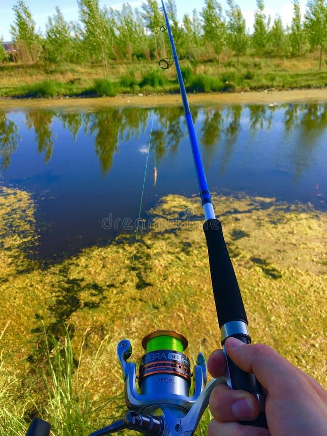Pesca na lagoa imagem de stock