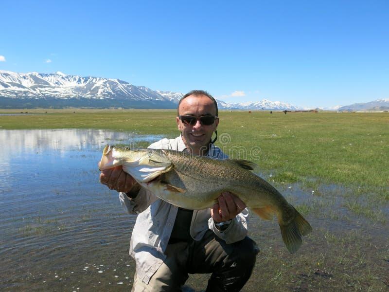 Pesca - osman mongolo fotografia stock libera da diritti