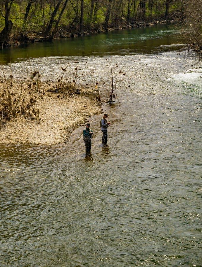 Pesca para a truta arco-?ris fotografia de stock