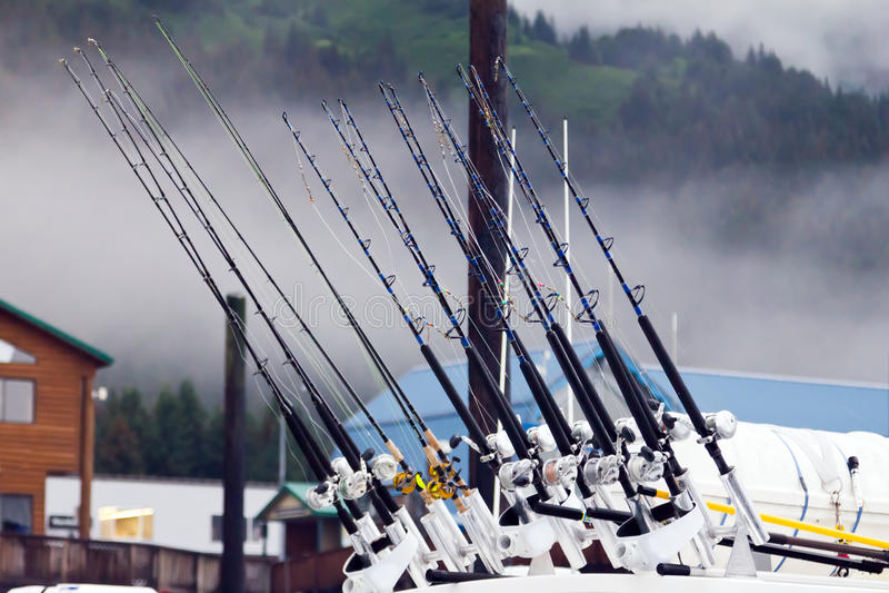Pesca polos fotografia de stock royalty free
