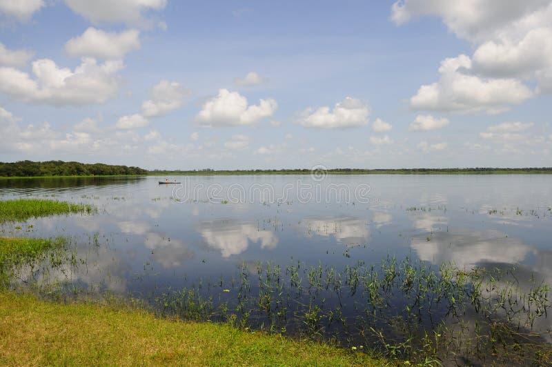 Pesca tranquilla di Myakka del lago fotografia stock