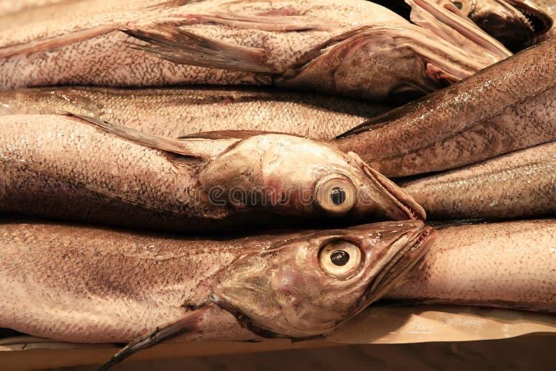 Pescadas frescas foto de stock