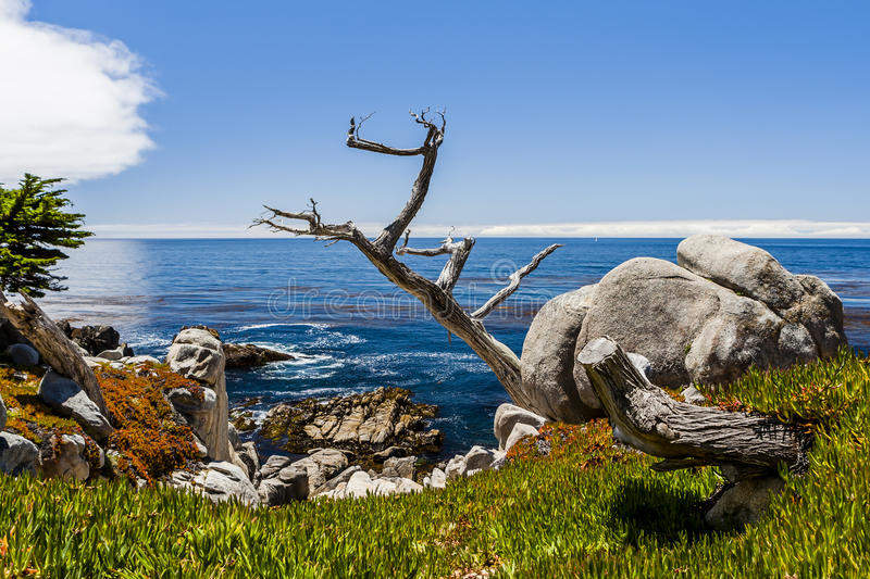 Pescadero Point at 17 Mile Drive in Big Sur California royalty free stock photography