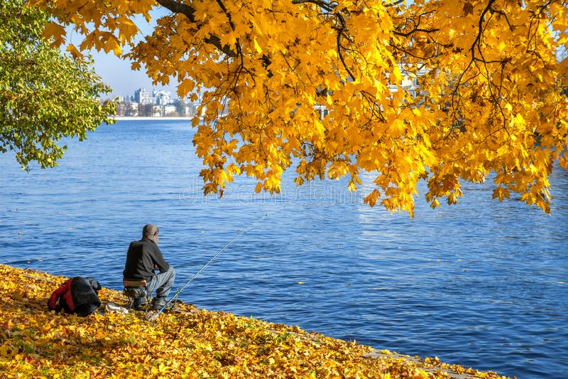 Pescador con la caña de pescar que se sienta debajo de las hojas amarillas del otoño en ramas del arce contra la perspectiva del  imagen de archivo