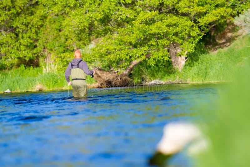 Pescador Deschutes River de la mosca fotografía de archivo libre de regalías