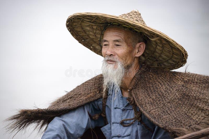 Pescador do cormorão fotos de stock royalty free