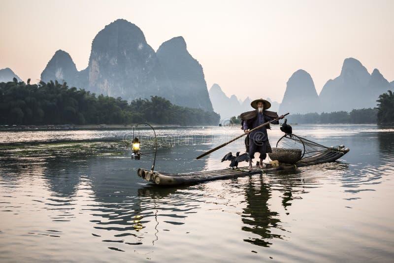 Pescador do cormorão fotografia de stock