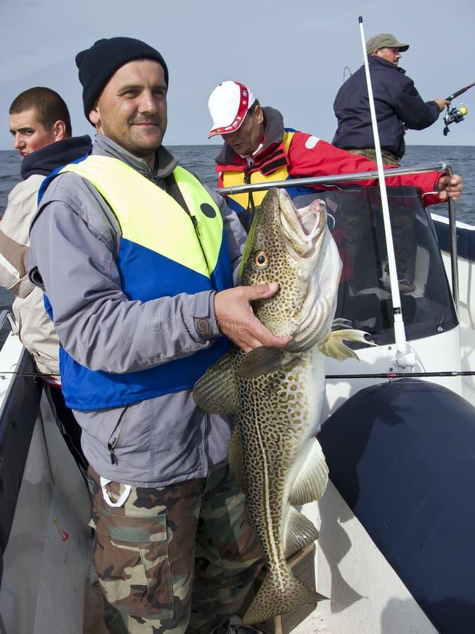 Pescador do mar com bacalhau enorme foto de stock