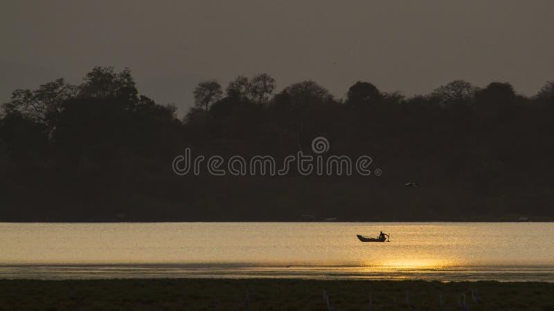 Pescador en la laguna de la bahía de Arugam, puesta del sol en la laguna, Sri Lanka foto de archivo libre de regalías