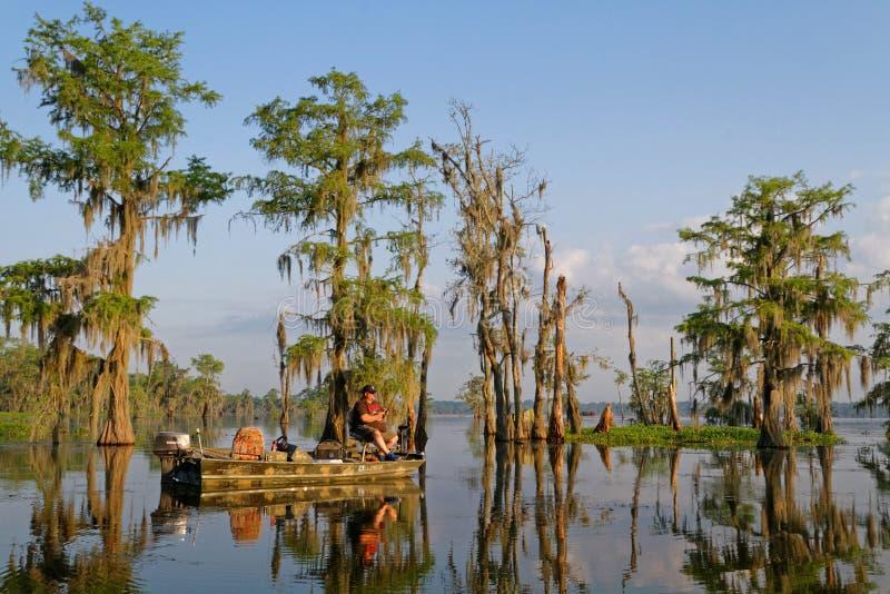 Pescador en la luz de la mañana de los pantanos foto de archivo