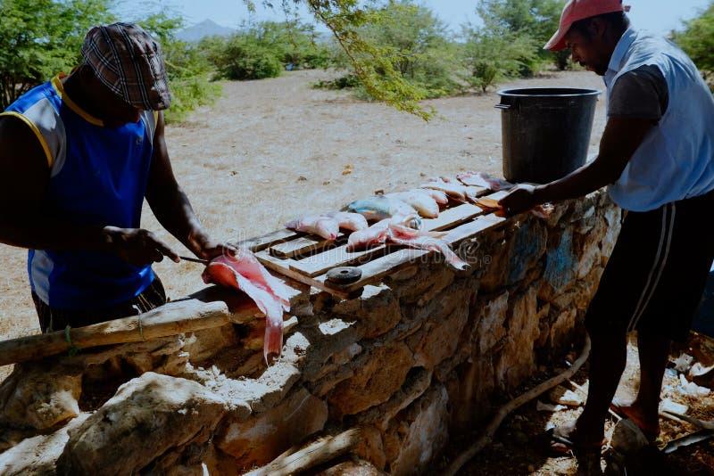 pescador local que limpia la captura en la sombra para conseguir lejos del calor tropical imagen de archivo