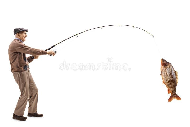 Pescador mayor con una carpa grande en una caña de pescar fotos de archivo