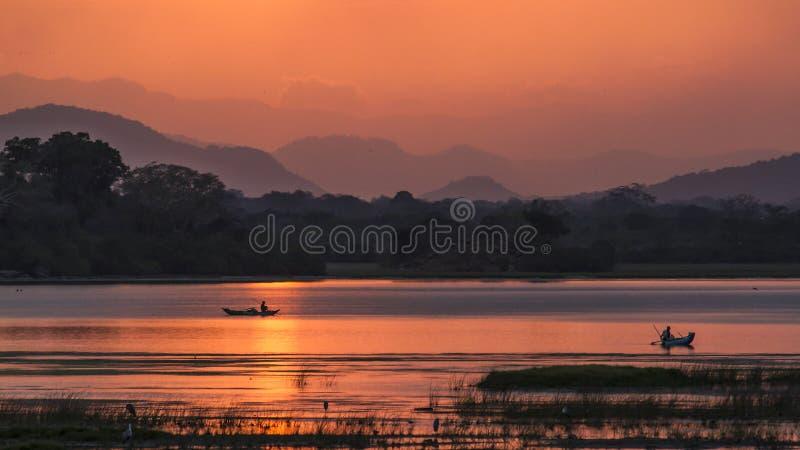 Pescador no por do sol da lagoa da baía de Arugam, Sri Lanka fotografia de stock