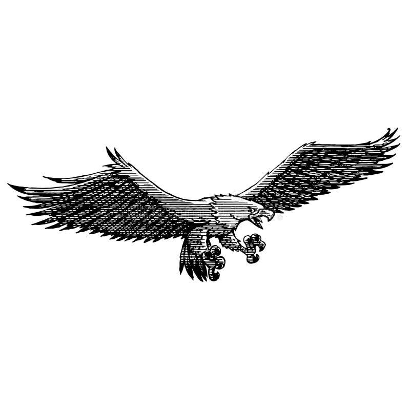 Pescador pasado de moda del águila en mosca ilustración del vector