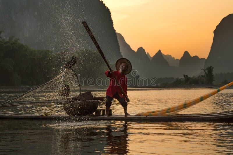 Pescador tradicional chinês com os cormorões que pescam, Li River fotos de stock royalty free