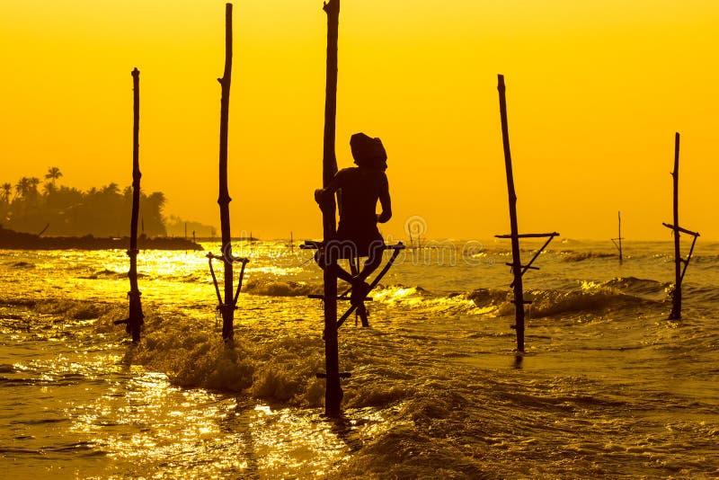 Pescador tradicional do ` s de Sri Lanka no por do sol Pescar em sedimentos é imagem de stock