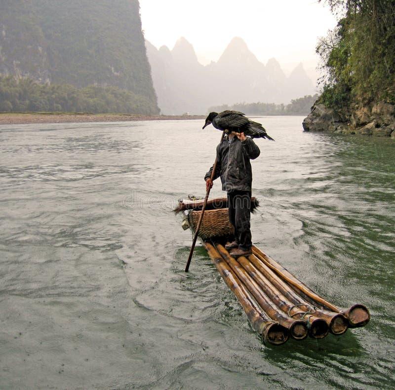 Pescador y cormorán foto de archivo