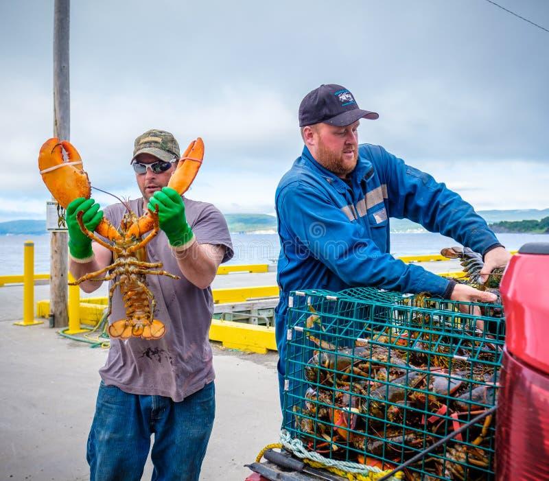 Pescadores de langosta, Terranova foto de archivo
