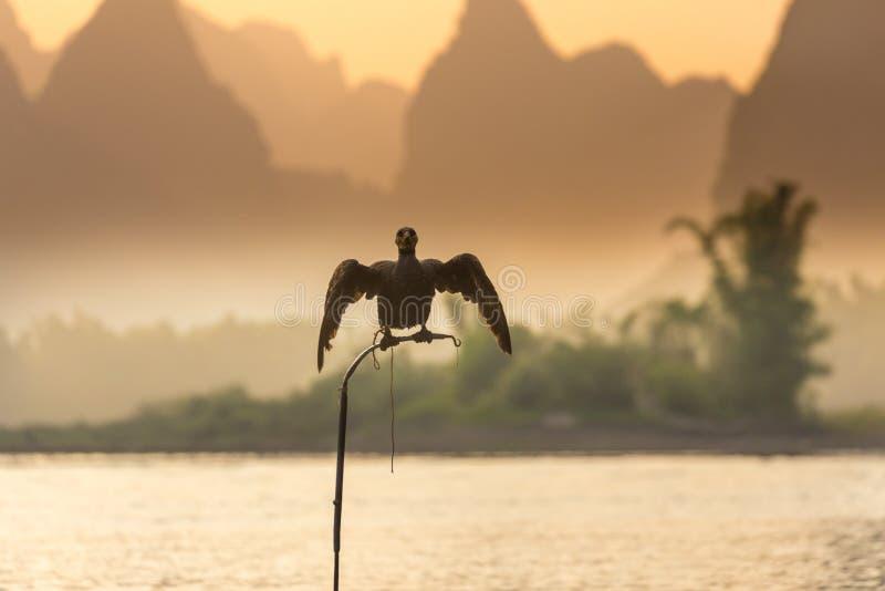 Pescadores em Li River fotos de stock royalty free