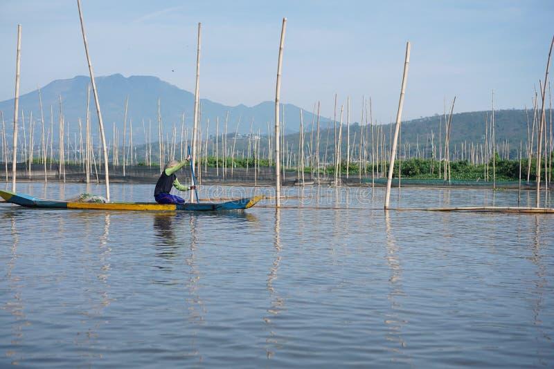 Pescadores en Rawa que encierran el lago, Java central, Indonesia imagenes de archivo
