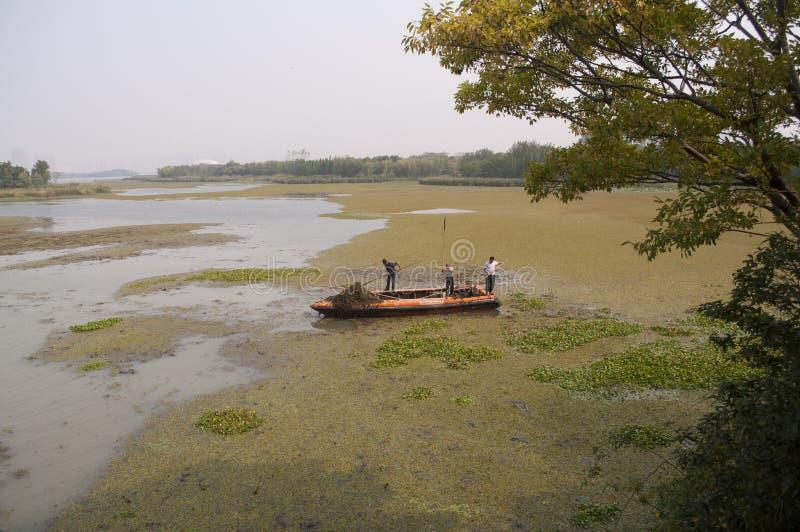 3 pescadores perto de Wuxi, China fotografia de stock royalty free