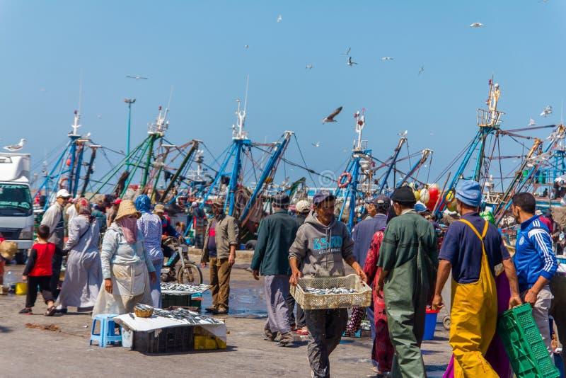 Pescadores que classificam e que vendem peixes recentemente travados no porto de Essaouira imagem de stock