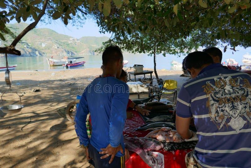 Pescadores que limpian y que cortan fotografía de archivo libre de regalías