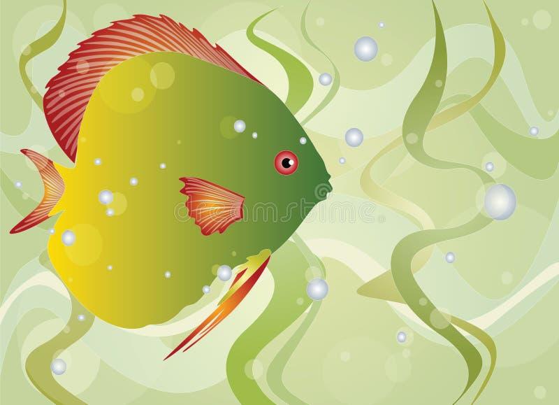 Pescados stock de ilustración
