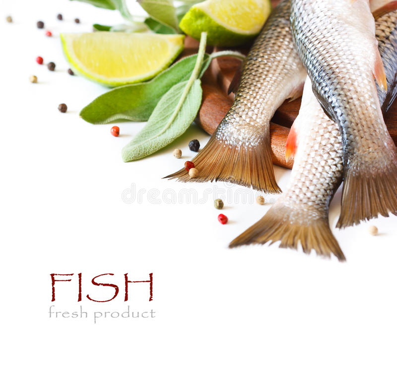 Pescados. fotografía de archivo libre de regalías