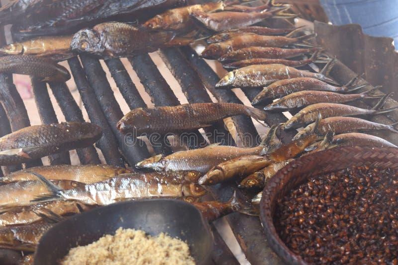 Pescados ahumados y hormiga tostada Una clase de comida ofreció al turista durante visitar la tribu indígena en el Brasil foto de archivo libre de regalías