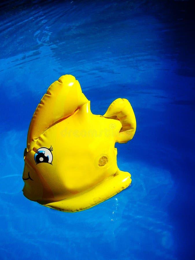 Pescados amarillos asombrosos del juguete en bella arte macra del papel pintado del agua azul profunda de la piscina foto de archivo libre de regalías