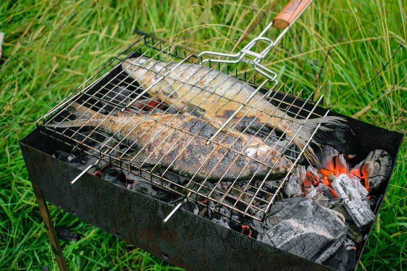 Pescados asados a la parrilla en los carbones imágenes de archivo libres de regalías