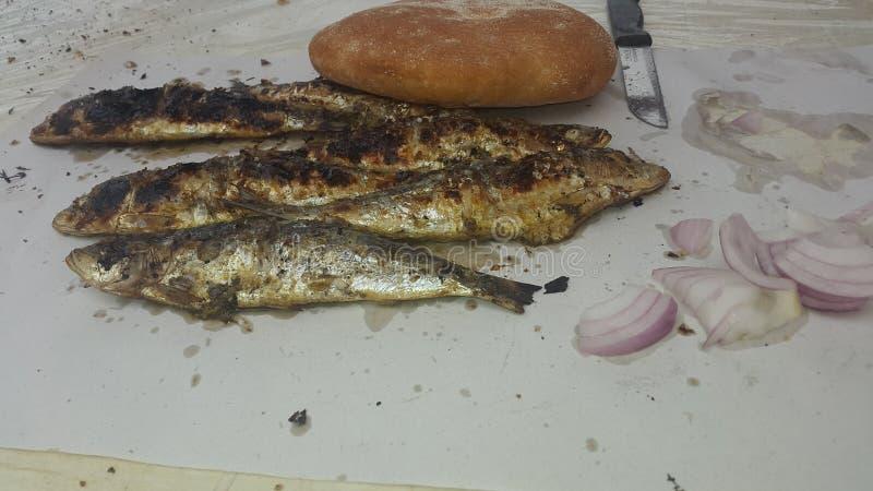 Pescados CHOUWAYA de la sardina imagen de archivo