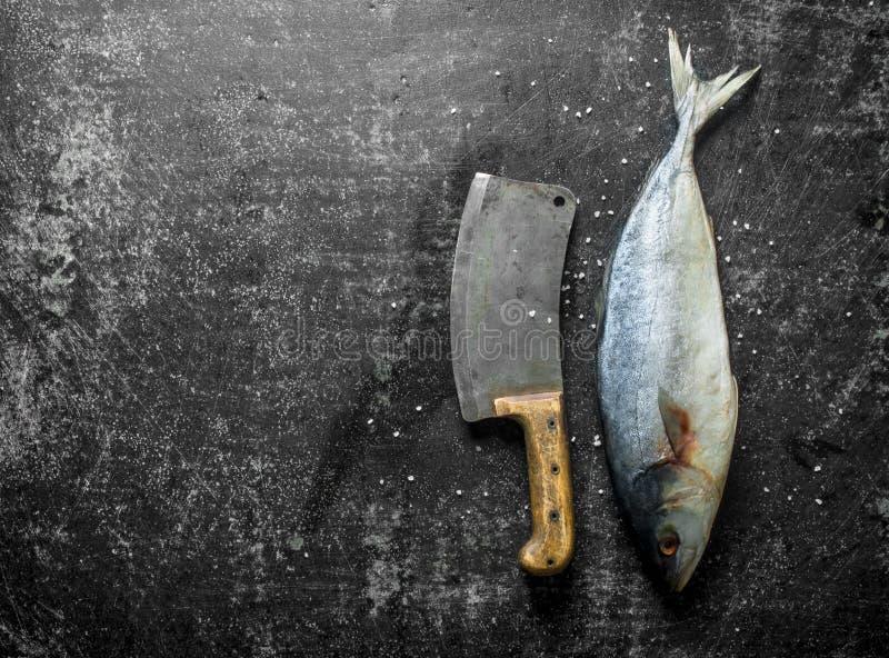 Pescados crudos con el cuchillo grande imágenes de archivo libres de regalías