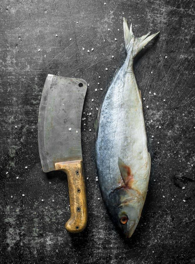 Pescados crudos con el cuchillo grande fotografía de archivo libre de regalías