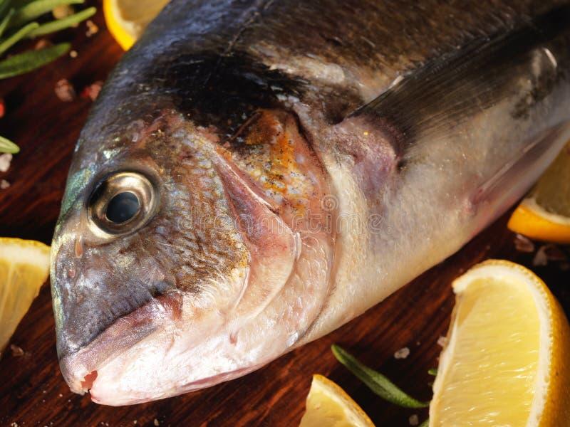 Download Pescados Crudos Del Dorado Con Romero Y Sal Del Mar Imagen de archivo - Imagen de alimento, frescura: 41920491
