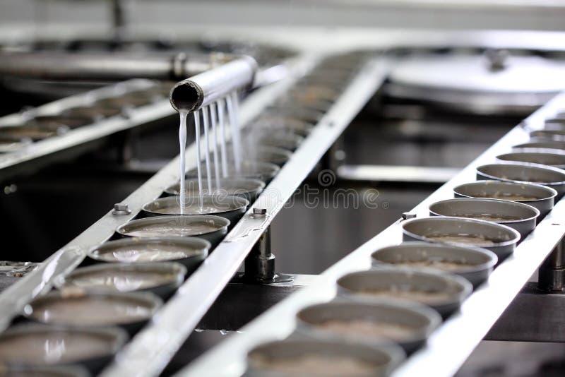 Pescados de atún en el tratamiento de latas en fábrica imagen de archivo
