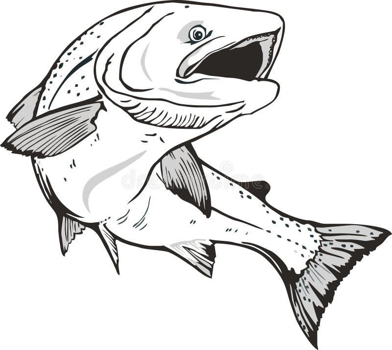 Pescados de color salmón libre illustration