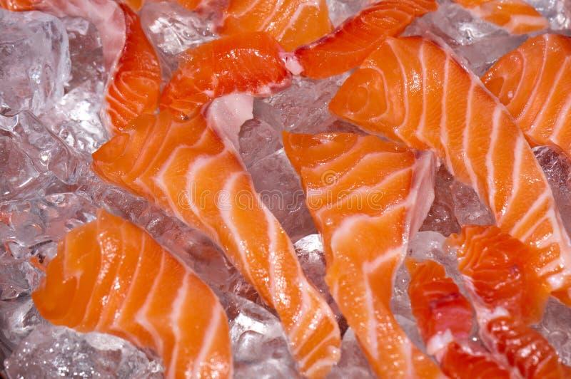 Pescados de color salmón sin procesar frescos en hielo imagen de archivo libre de regalías