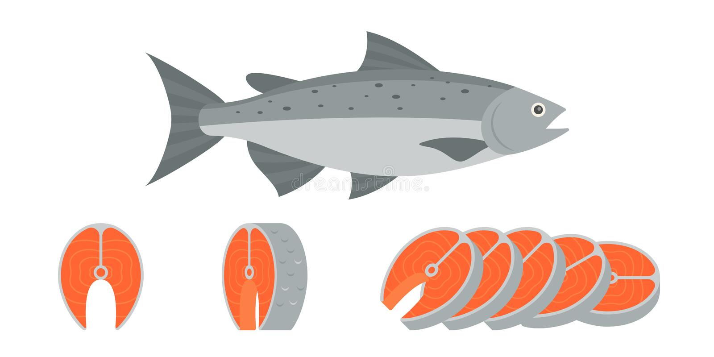 Pescados de color salmón y cortado del filete de prendedero de color salmón ilustración del vector