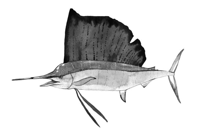 Pescados de la acuarela, pescados del sailboad imágenes de archivo libres de regalías