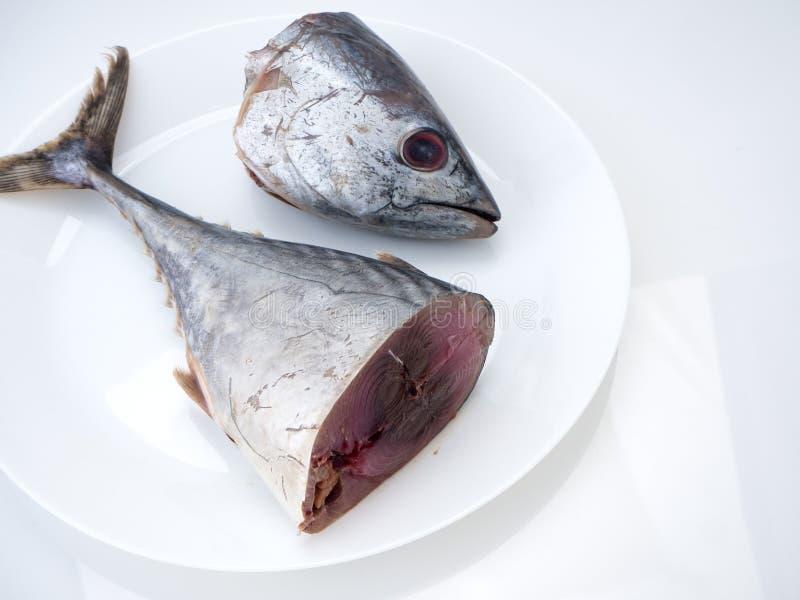 Pescados &#x28 de la caballa; saba fish) en el fondo blanco fotografía de archivo
