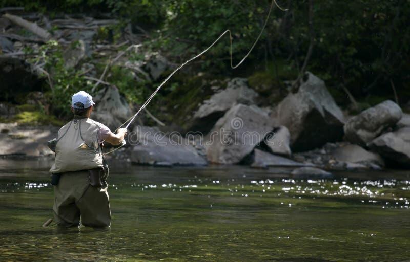 Pescados de la mosca echados en Montana foto de archivo libre de regalías